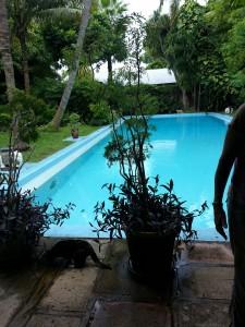 Det ekstremt dyre bassenget. Her har det visstnok vært mange pool parties.